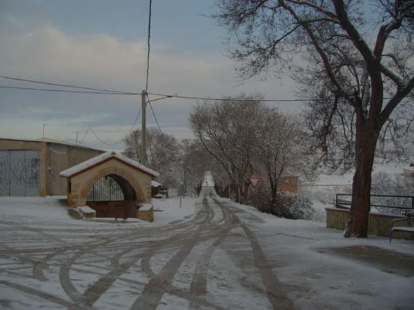 nevada-5.jpg